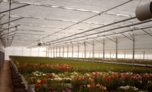 Greenhouse energy saving